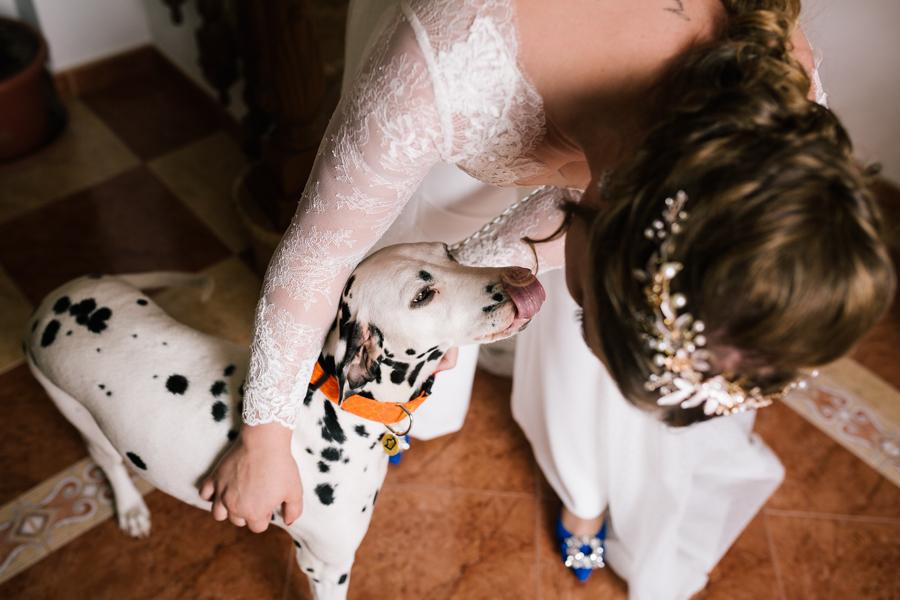 Boda diferente y original fotógrafo de Málaga boda Villanueva del Trabuco con mono de Valerio Luna